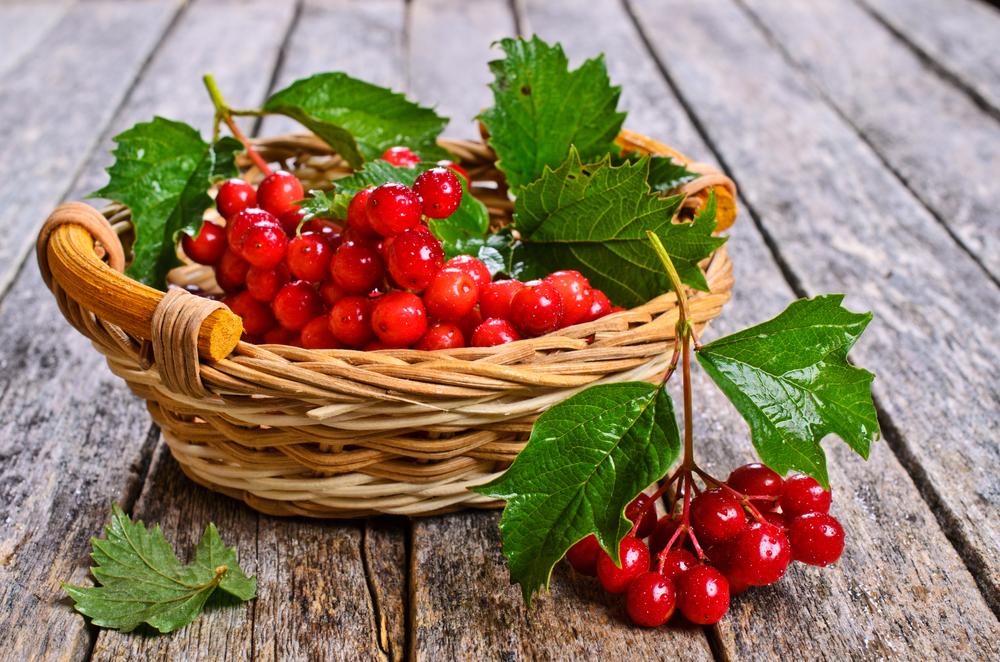 рецепты при повышенном холестерине крови