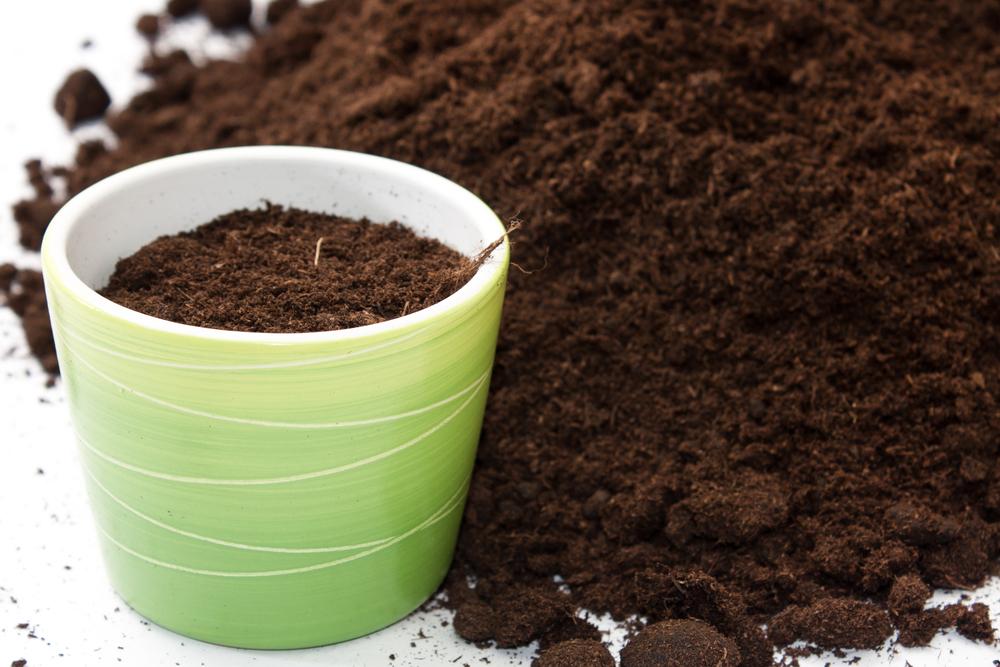 что можно использовать в качестве удобрений для комнатных растений