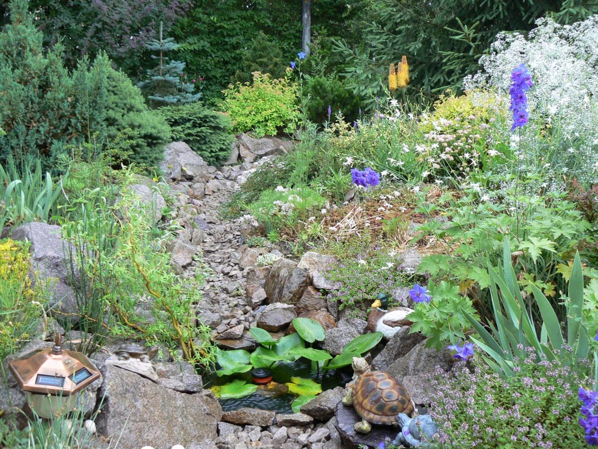 Сухой ручей в саду своими руками