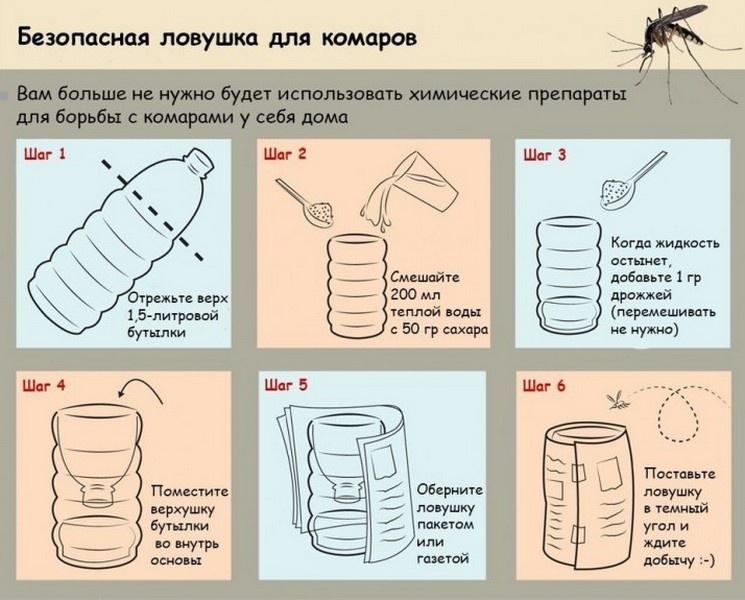 Как сделать ловушку в дом условиях