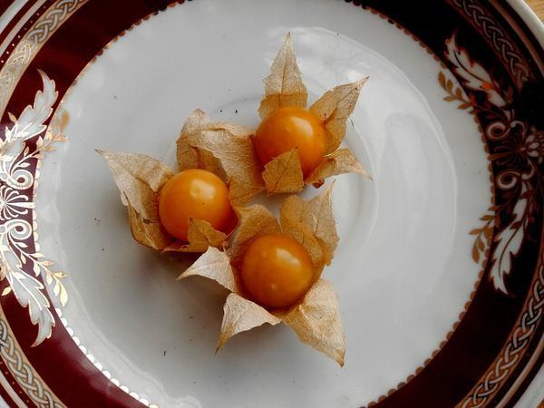 Физалис сахарный Изюмчик, семена