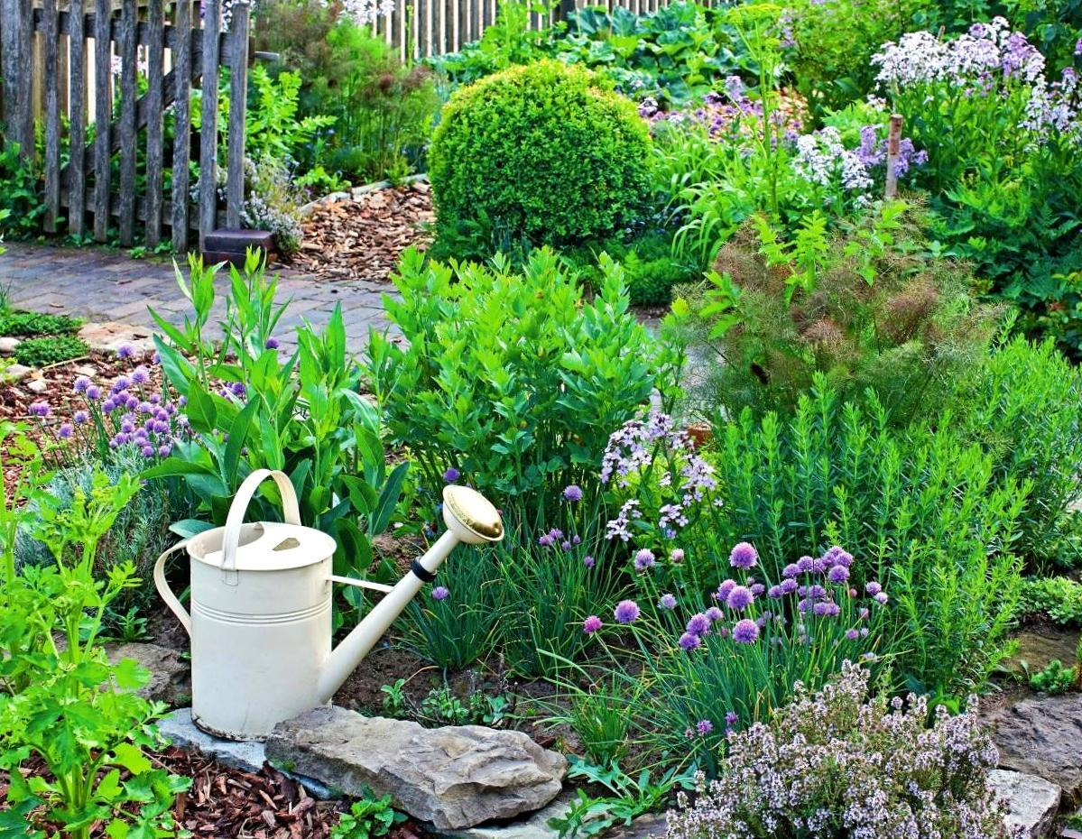 Посадка травы в саду