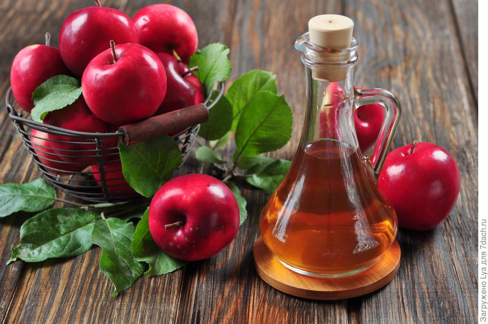 Лечение подагры яблочным уксусом
