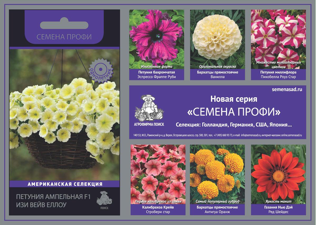 Поиск Цветы Интернет Магазин Профи Агрофирма