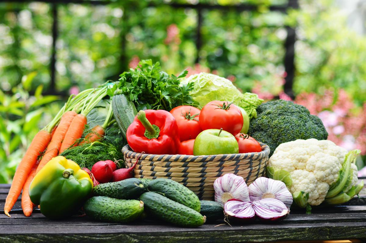 Выращивали ли Вы цветы и овощи из кубанских семян?