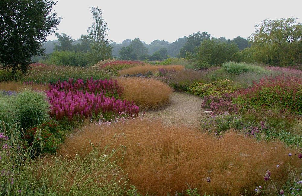 Naturgarden или спонтанный сад