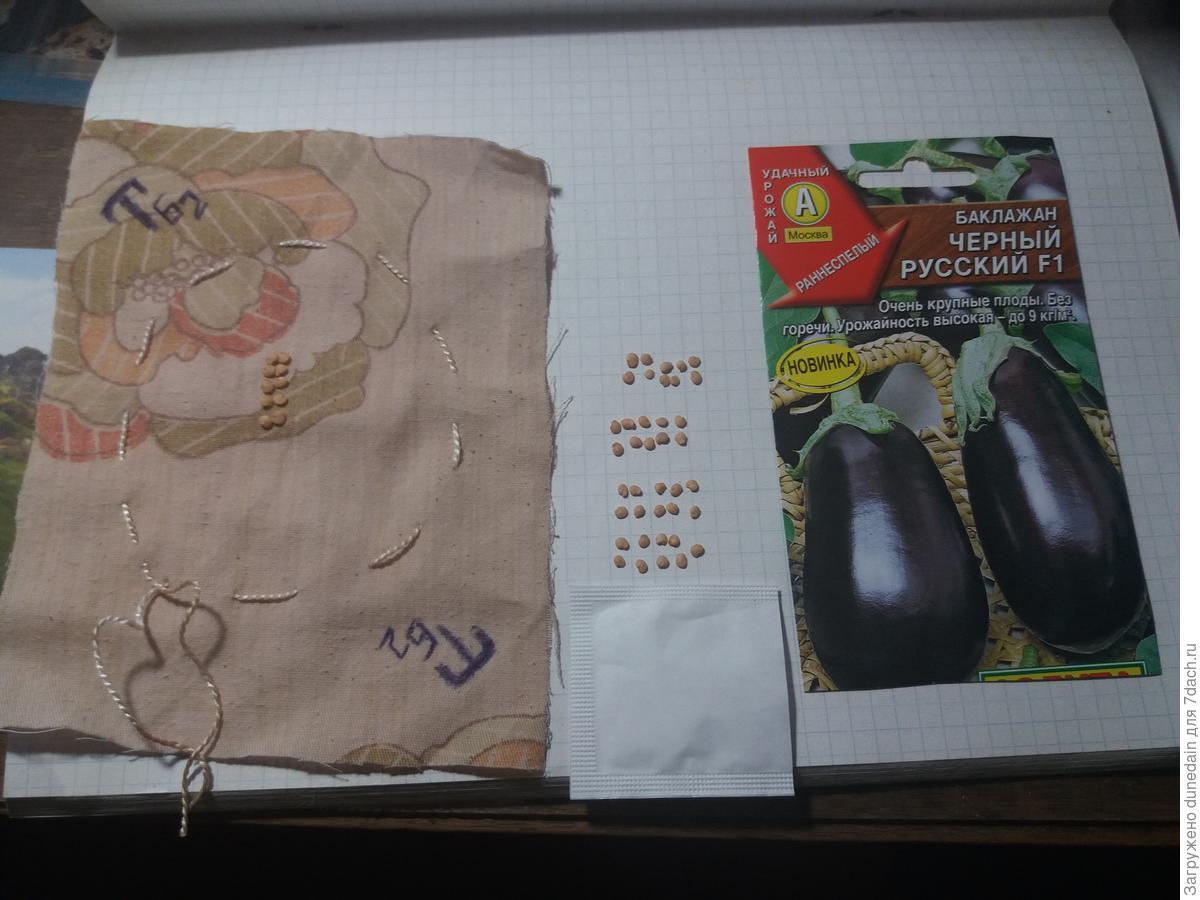 замачивание семян баклажан в эпине