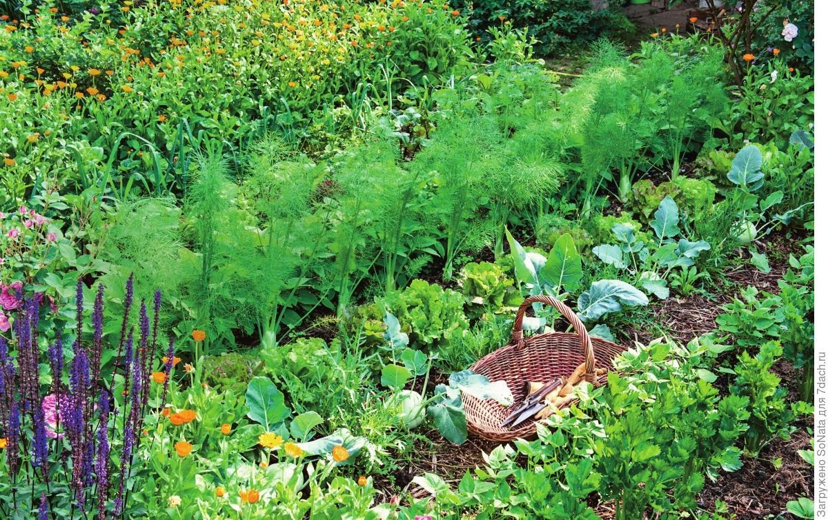 Если во сне вы сажаете растения, судьба подарит вам благополучие и достаток.