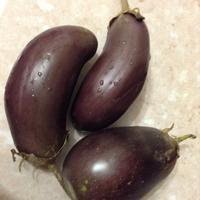Можно ли готовить незрелые баклажаны?