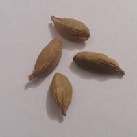Помогите определить название семян