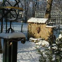 Две зимы нашего прекрасного сада