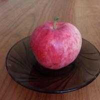 Можно ли как-то помочь яблоне активно плодоносить?