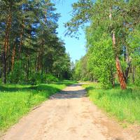 Фотографии и отзывы о коттеджном поселке «Малая Дубна» (Орехово-Зуевский р-н МО)