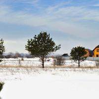 Фотографии и отзывы о коттеджном поселке «Дубровка» (Рязанский р-н Рязанской области)