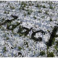 У всех выпал снег до серьезных морозов?