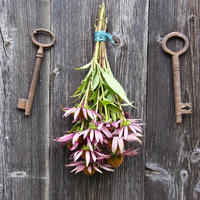Что можно сделать из старых ключей: идеи для дома