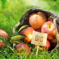 """Биопрепараты - альтернатива вредной садовой """"химии"""""""