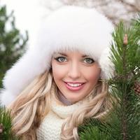 Новогоднее дерево: кто и почему выбирает ель, пихту или сосну