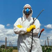 Защита растений по «Сингенте» — это должен знать каждый