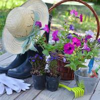 10 лайфхаков, которые сделают дачную жизнь проще