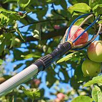 Незаменимые помощники при сборе урожая: 7 топовых приспособлений