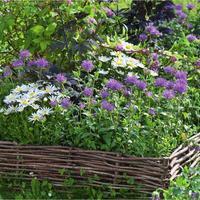 Городите огород: идеи оформления цветников и грядок