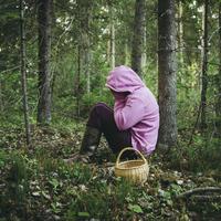 Как не заблудиться в лесу: определяем работающие способы