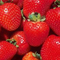 Клубника – королева ягод. Или земляника?