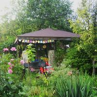 День рождения в саду