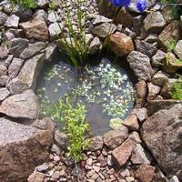 Водоем: дренаж излишней воды.