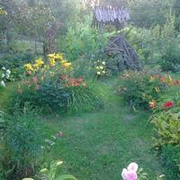 Как я попала к саду в зависимость.