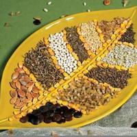Сроки хранения и посева, условия проращивания семян овощных культур