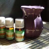 Лечебная ароматерапия: волшебный аромат цитрусовых