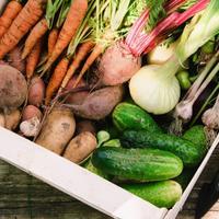 Лучшие способы зимнего хранения овощей