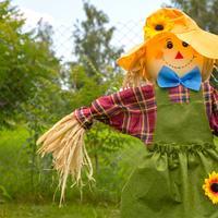 Идеи для тех, кто хочет смастерить пугало огородное
