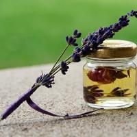 Рецепты здоровья: масло из лаванды от головной боли и стресса