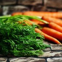 Рецепты здоровья: о пользе морковной ботвы и способах ее применения