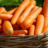 Рецепты здоровья: морковь для хорошего зрения
