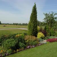Сад кустарников: всерьез и надолго