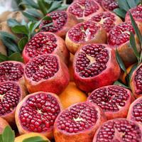 Драгоценная ягода - гранат: посадка и уход