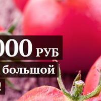 """Правила конкурса """"100 000 рублей за самый большой помидор"""""""