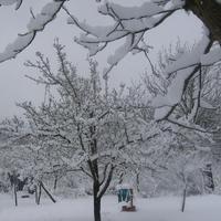 Дача под снегом.