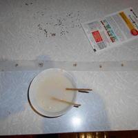 Как я сажаю морковь на ленте (туалетной бумаге)