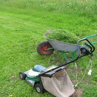 Электрическая газонокосилка. Как выбрать?