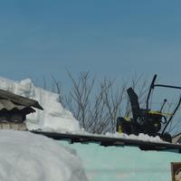 Аист на крыше к миру, а снегоочиститель к чему?