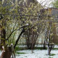 Ранняя весна и поздний снег