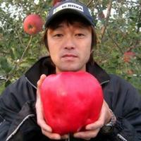 Самое большое яблоко в мире