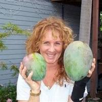 Самый тяжелый манго.