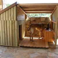 Загородный дом для барбоса