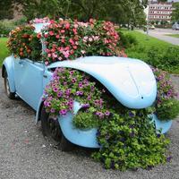 Шикарная клумба из старого авто